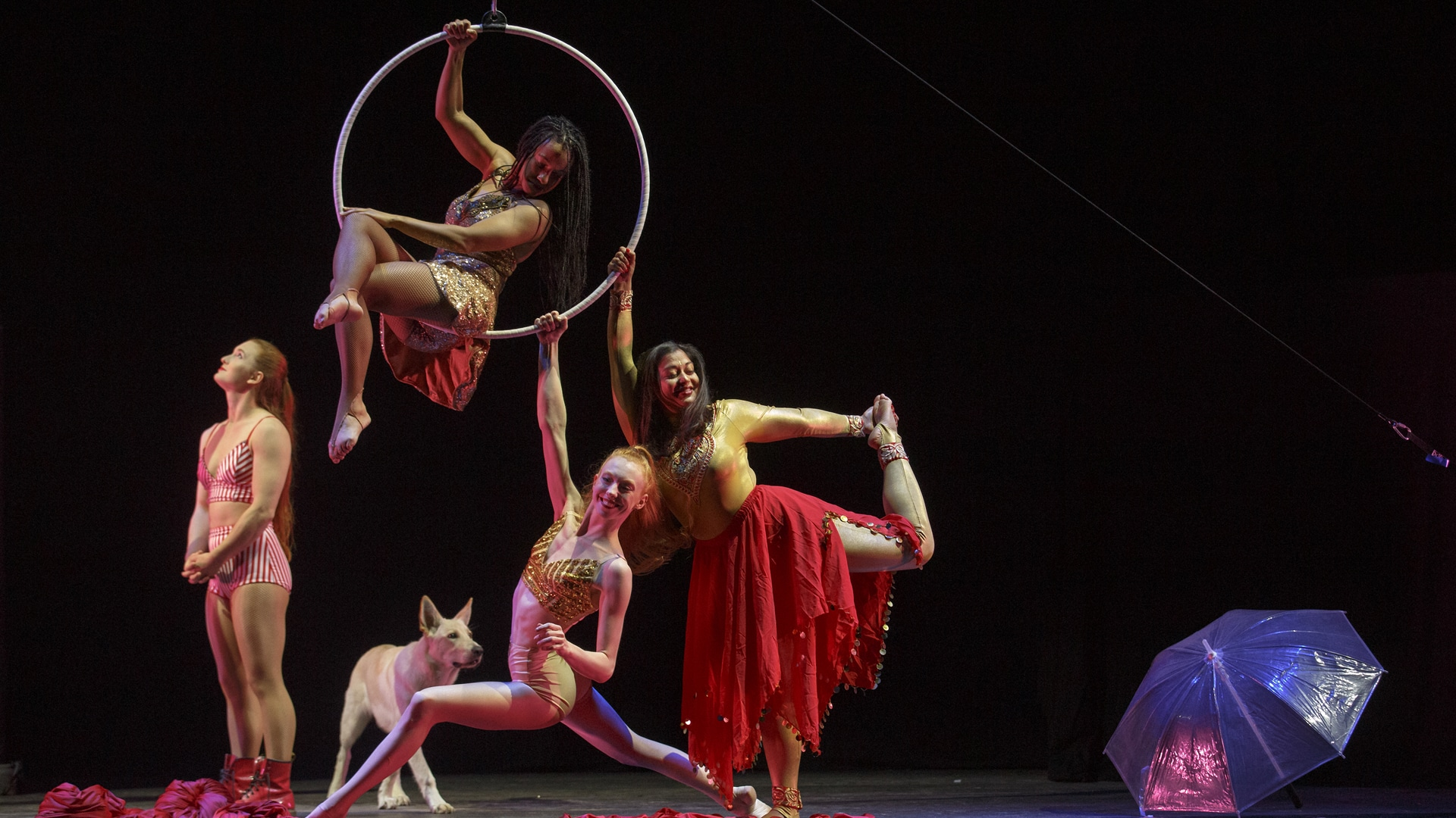 Dancers and aerial performers wearing gold and red costumes with a dog and an umbrella on stage